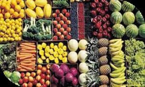 secteur-alimentation