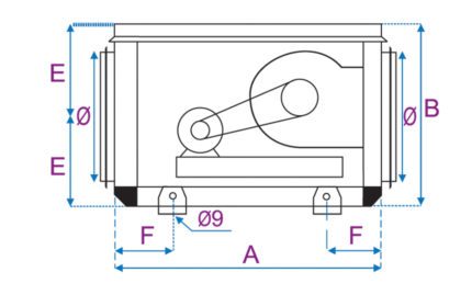 Dimensions CVAT - Face